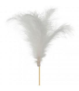 Pics plumes 10 cm +10 Blanc x 24
