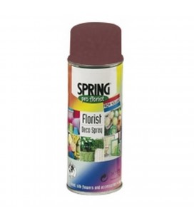 Spray  Color 400 ml Burgundy red051