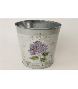 Pot Hydrangea Blue 23.5h22