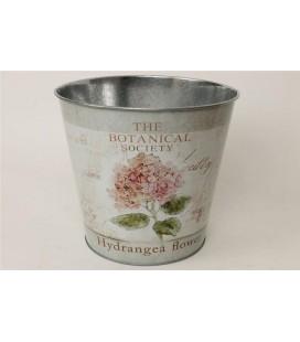 Pot Hydrangea Rose 23.5h22