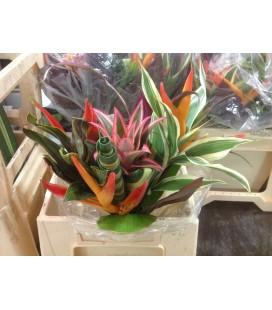 Bouquet exotique af  45 cm